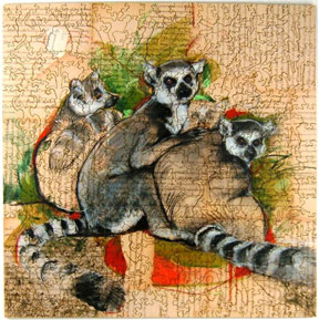 SUPPORT the Lemur conservation foundation